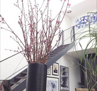 ひな祭り 桃の花 飾り方