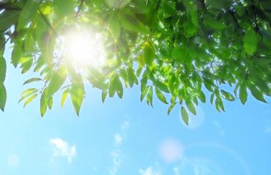 髪の紫外線対策のポイントと髪専用日焼け止め02