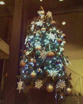滝沢さんクリスマスツリーデコレーション03