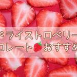 可愛い!ドライストロベリーチョコレートの人気&おすすめ8選!【バレンタイン・ホワイトデーにも!】